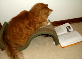 minet reading 001.JPG  fixed for blog
