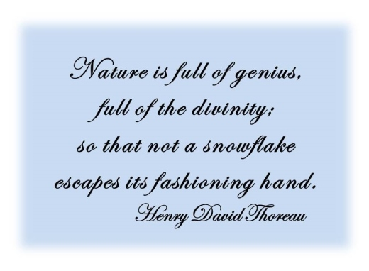 Thoreau on snowflakes