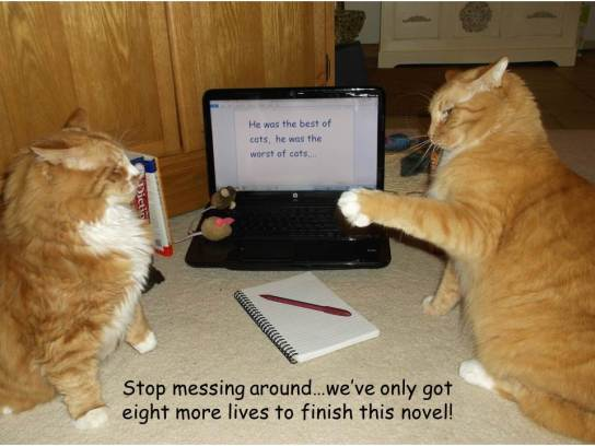 eight lives to finish novel